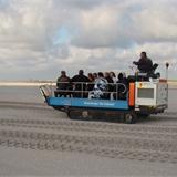 Strandrups 2011-06.JPG